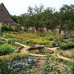 Bauerngarten_250