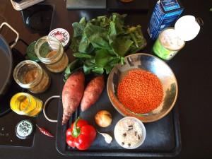 Zutaten für das Curry